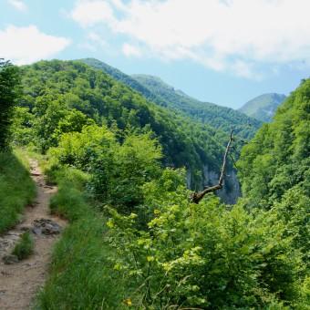 Gorges d'Holzarté & Gorges de Kakuetta